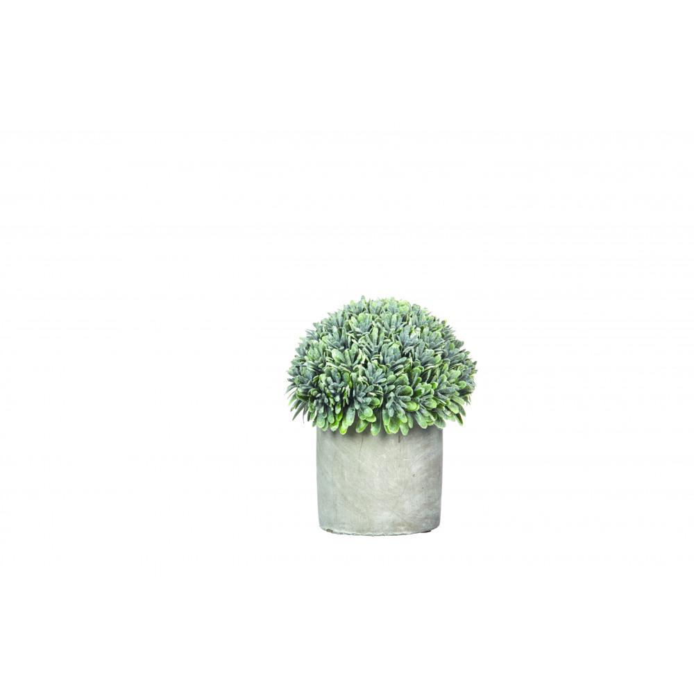 deko kunstplanze buchsbaum im beton-topf | stuff shop