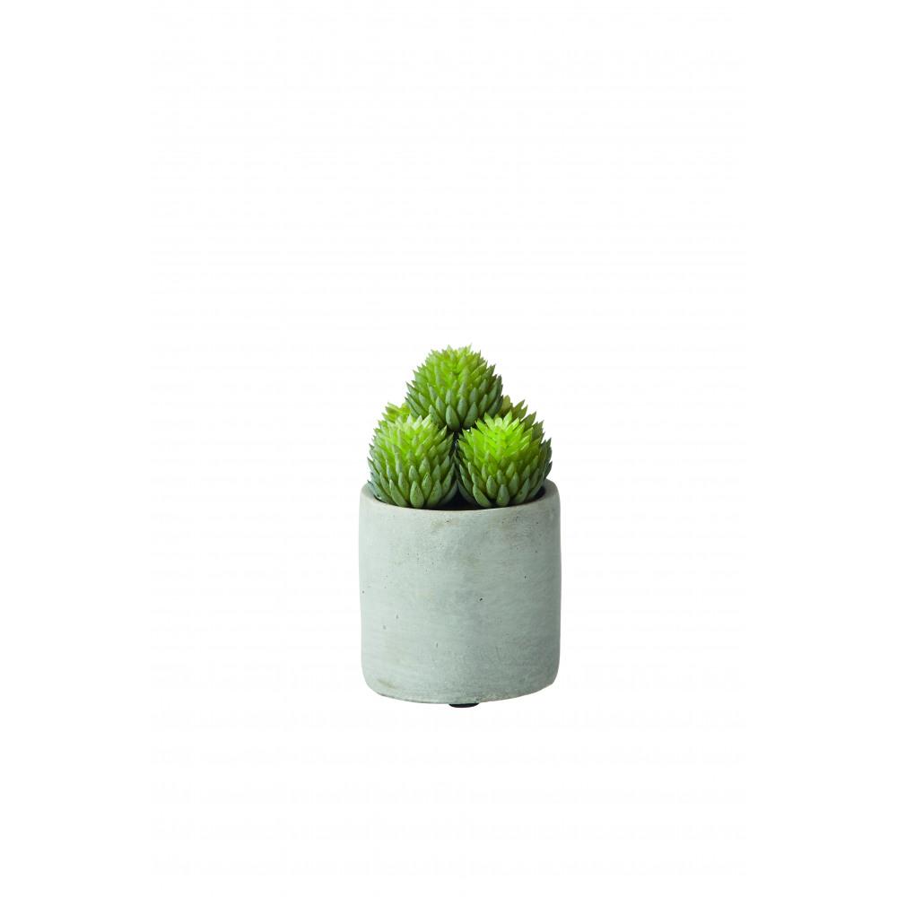 deko kunstplanze sokkulente im beton-topf | stuff shop